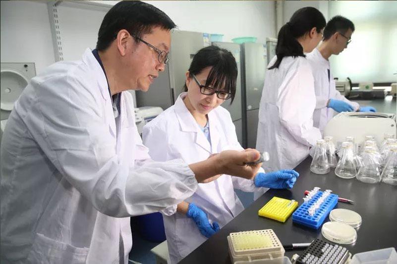 <b>大型有机肥厂实验室仪器设备配套方案</b>